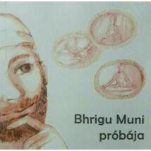 Bhrigu Muni próbája
